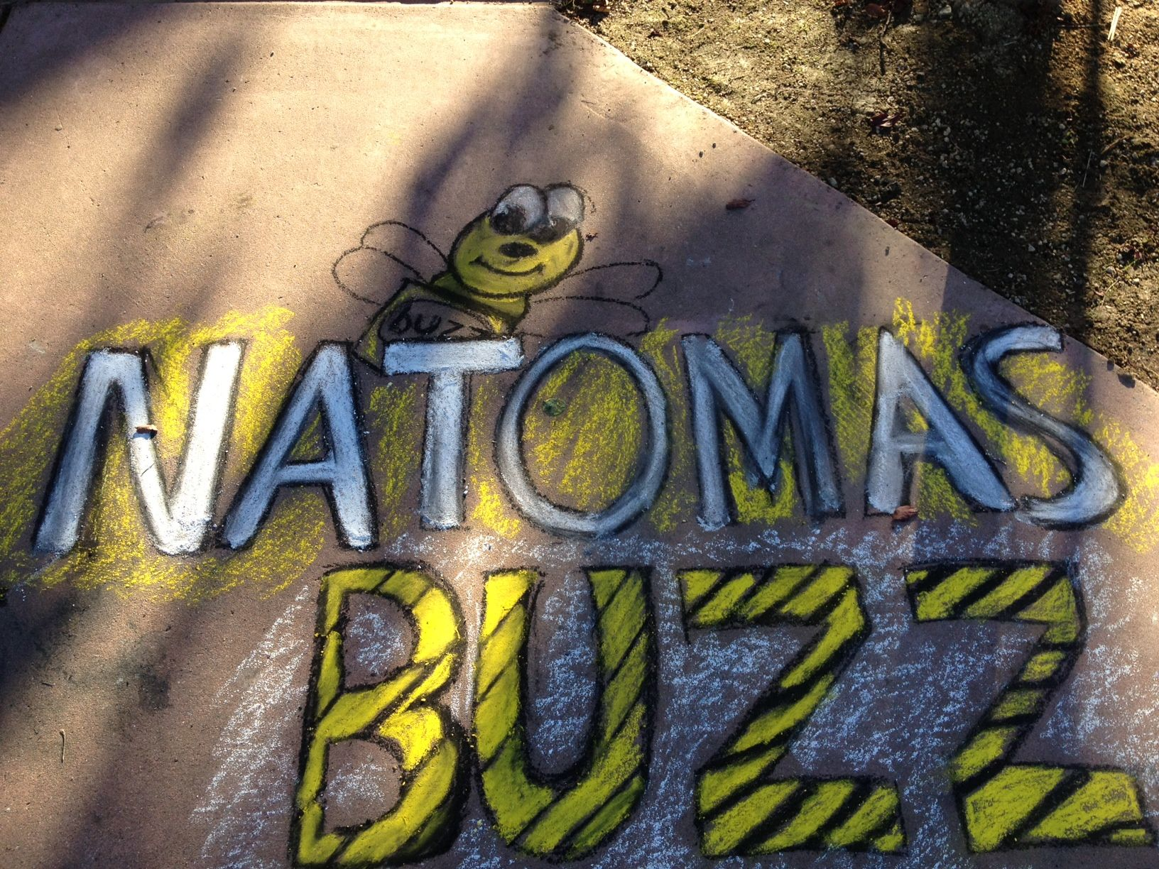 Harvest the Arts in Natomas