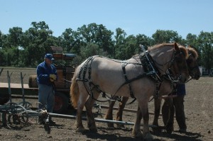 Farm and Tractor Days Returns to Rio Linda