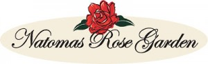 Natomas Rose Garden Needs Volunteers