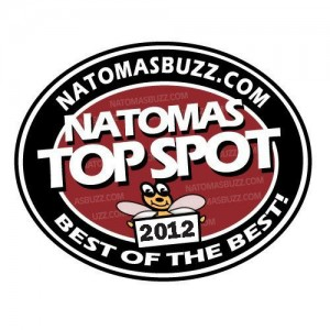 TopSpot2012logo
