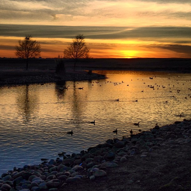 xsunset over Natomas Park Lake