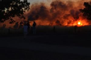 Fire Burns 20 Acres in North Natomas