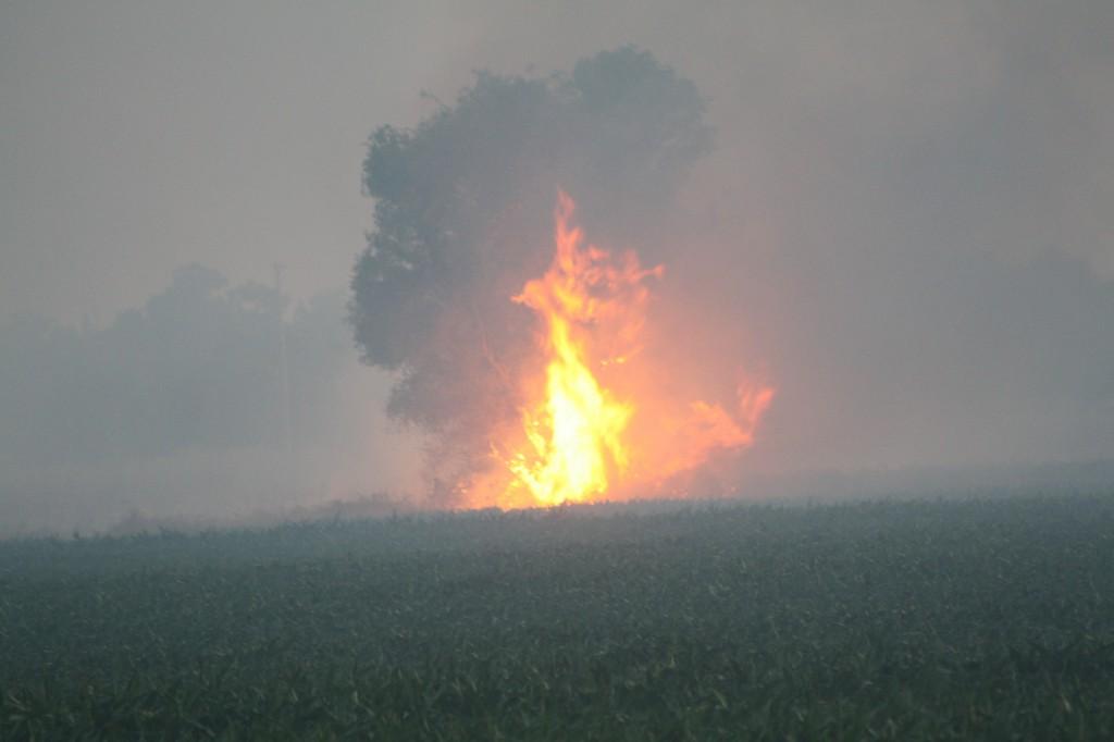 bayoufire34