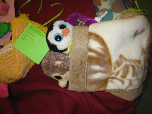 Stuffies Take Over Natomas Library After Dark