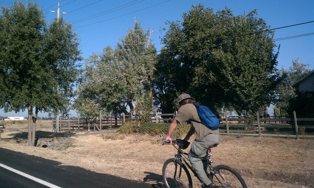 A cyclist rides westbound on Del Paso Road near Valley View Acres.