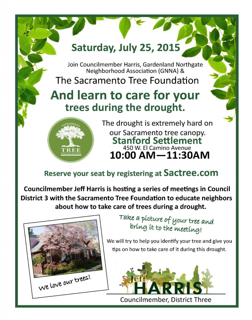 Tree Event - Stanford Settlement-1
