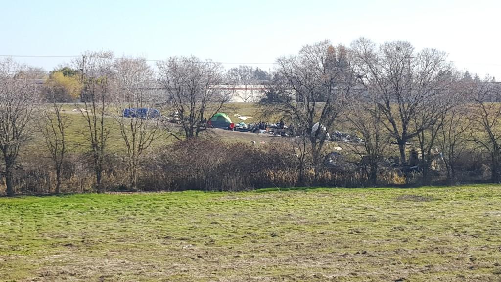 Homeless encampment near Main Street bridge and Northgate Boulevard, adjacent to Steelhead Creek. / Photo: M. Laver
