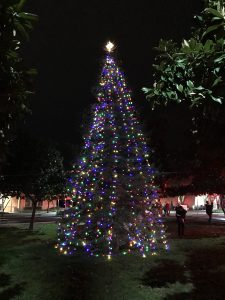 Natomas Kicks Off Holidays at Annual Event