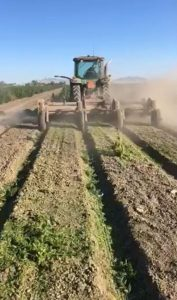 Rule Change to Allow Hemp Crops in Sac County