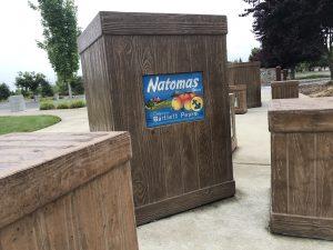 Where in Natomas?