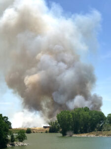 Grass Fire in Natomas Started Accidentally