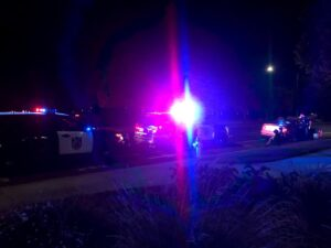 Image of police car lights flashing. Silhouette of driver and companion sitting on curb.