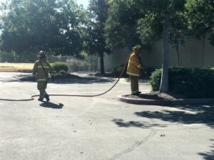 Image of firefighter with hose pointed at bark.