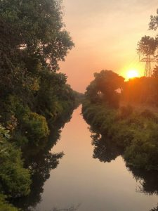 Image of water way flanked by mature trees with setting sun in the distance.