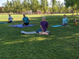 Image of four people sitting on the grass on yoga mats and stretching.