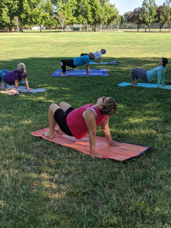 Image of people on yoga mats on the grass in a pose.