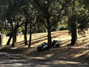 Image of vehicle wrapped split in two by a tree.